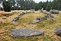 Hjortsberga gravfält (Raä-nr Hjortsberga 8-1) skeppssättning 5576.jpg