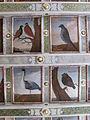 Hoflößnitz Paintings of birds by Albert Eckhout.JPG