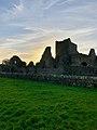 Hore Abbey, Caiseal, Éire - 31644884177.jpg