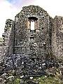 Hore Abbey, Caiseal, Éire - 46533567112.jpg