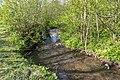 Horn-Bad Meinberg - 2015-05-10 - LIP-028 Silberbachtal mit Ziegenberg (22).jpg