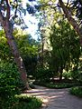 Hort de Romero o jardí de Montfort de València.JPG