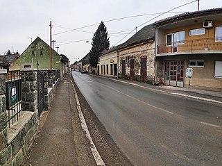 Glina, Croatia Town in Continental Croatia, Croatia