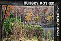 Hungry Mother in the Fall (22830130440).jpg