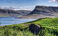 Hvalfjörður (4856689079).jpg