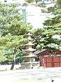 Hyehwa fall 2014 095 (Changgyeonggung).JPG