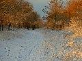 Iarna la Bodo - panoramio.jpg