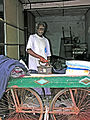 India-7502 - Flickr - archer10 (Dennis).jpg