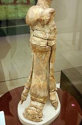 Paraceratherium – Wikipedia