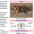 Infobox example.jpg