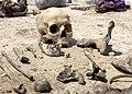 Iraqi mass grave.jpg