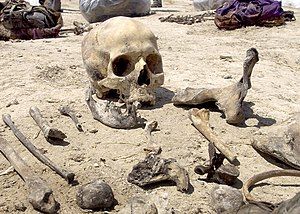 Anfal genocide - Human remains found in at a mass grave site in Iraqi Kurdistan, July 15, 2005