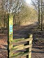 Irwell Sculpture Trail - geograph.org.uk - 115247.jpg