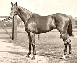 Isinglass (horse) British-bred Thoroughbred racehorse
