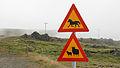 Island 2010-762.jpg