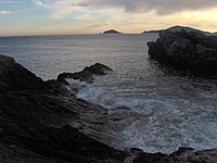 Isola del Tino vista da Tellaro .jpg