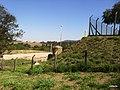 Itupeva - SP - panoramio (1039).jpg