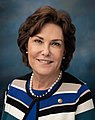 Jacky Rosen, official portrait, 116th congress.jpg