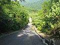 Jalan ke puncak - panoramio.jpg