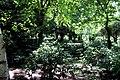 Jardin Botanico (9) (9376524073).jpg