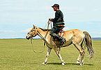 Jeździec na stepie na lokalnym festiwalu Naadam (01).jpg
