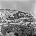 Jeruzalem. Gezicht op de Olijfberg met aan de voet daarvan de Weg der Gevangenne, Bestanddeelnr 255-1660.jpg