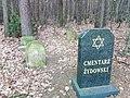 Jewisch Cmentary Michow Poland.jpg