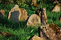 Jewish Cemetery in Lutowiska. Bieszczady Poland - panoramio (13).jpg
