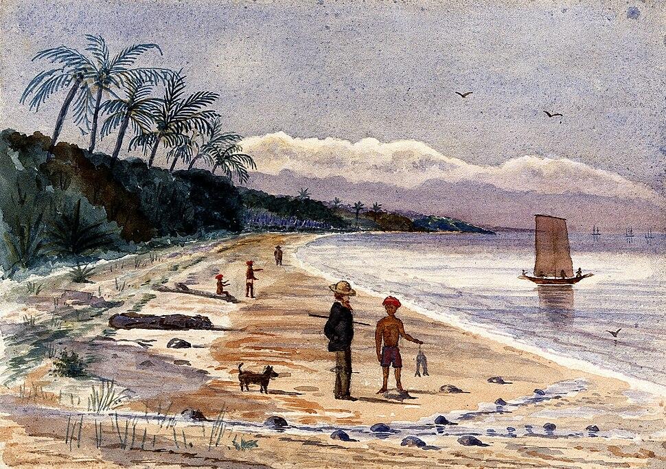 John Edmund Taylor, View along the Beach by Singlap, Singapore (1879, Wellcome V0037487)