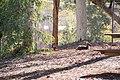 Journey 2 110520 gnangarra-107.jpg