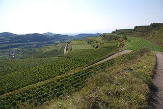 Baden (wine region) wine-producing region