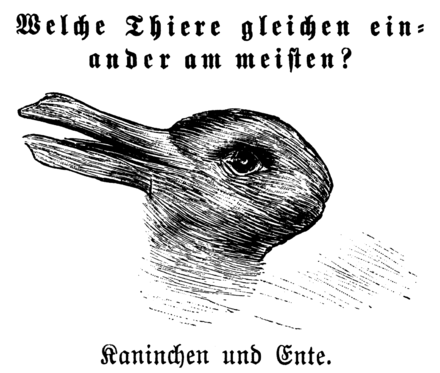 "Illustration of a ""duckrabbit"", discussed in the Philosophical Investigations, section XI, part II"