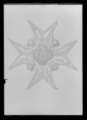 Kappkraschan för riddare av Serafimerorden, Sverige, 1800-talets början - Livrustkammaren - 17680.tif