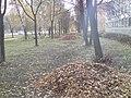 Kastryčnicki District, Mogilev, Belarus - panoramio (752).jpg