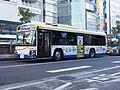 Kawasaki Tsurumi Rinko Bus 428 Safety Drive Training Bus ERGA LV234.jpg