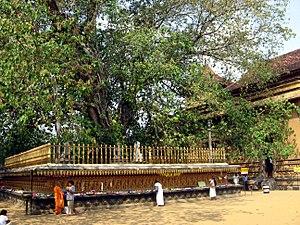Kelaniya Raja Maha Vihara - Image: Kelaniya 003