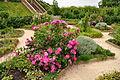 Kenilworth Castle Gardens (9799).jpg