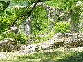 Khobi monastery complex. Ruins of a palace.JPG
