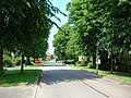 Knapton Lane - geograph.org.uk - 184483.jpg