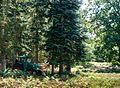 Knudshoved Odde - panoramio (6).jpg