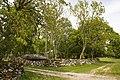 Koguva - panoramio.jpg