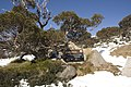 Kosciuszko National Park NSW 2627, Australia - panoramio (227).jpg