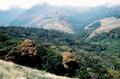 Kottangathatti Kalakad hills April 1983 AJTJ.tif