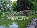Kraków, ogród botaniczny Uniwersytetu Jagiellońskiego - Cracow, the botanical garden of the Jagiellonian University - panoramio (4).jpg