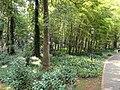 Kunming Botanical Garden - DSC02900.JPG