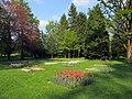 Kurpark Bad Krozingen - panoramio.jpg