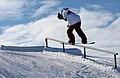LG Snowboard FIS World Cup (5435329727).jpg