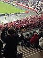LOSC au Stade de France.jpg