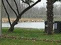 "Laghetto ""Le Orzaie"" - panoramio (1).jpg"