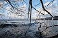 Lake Fishing (131461953).jpeg